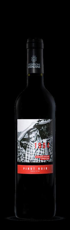 1964 Pinot Noir