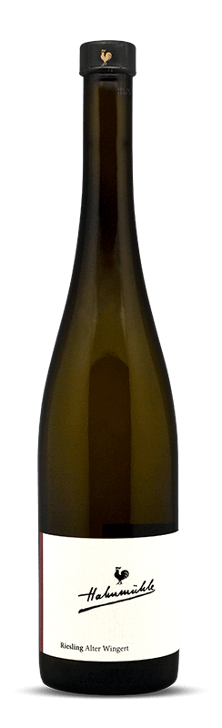 Hahnmühle Riesling Alter Wingert