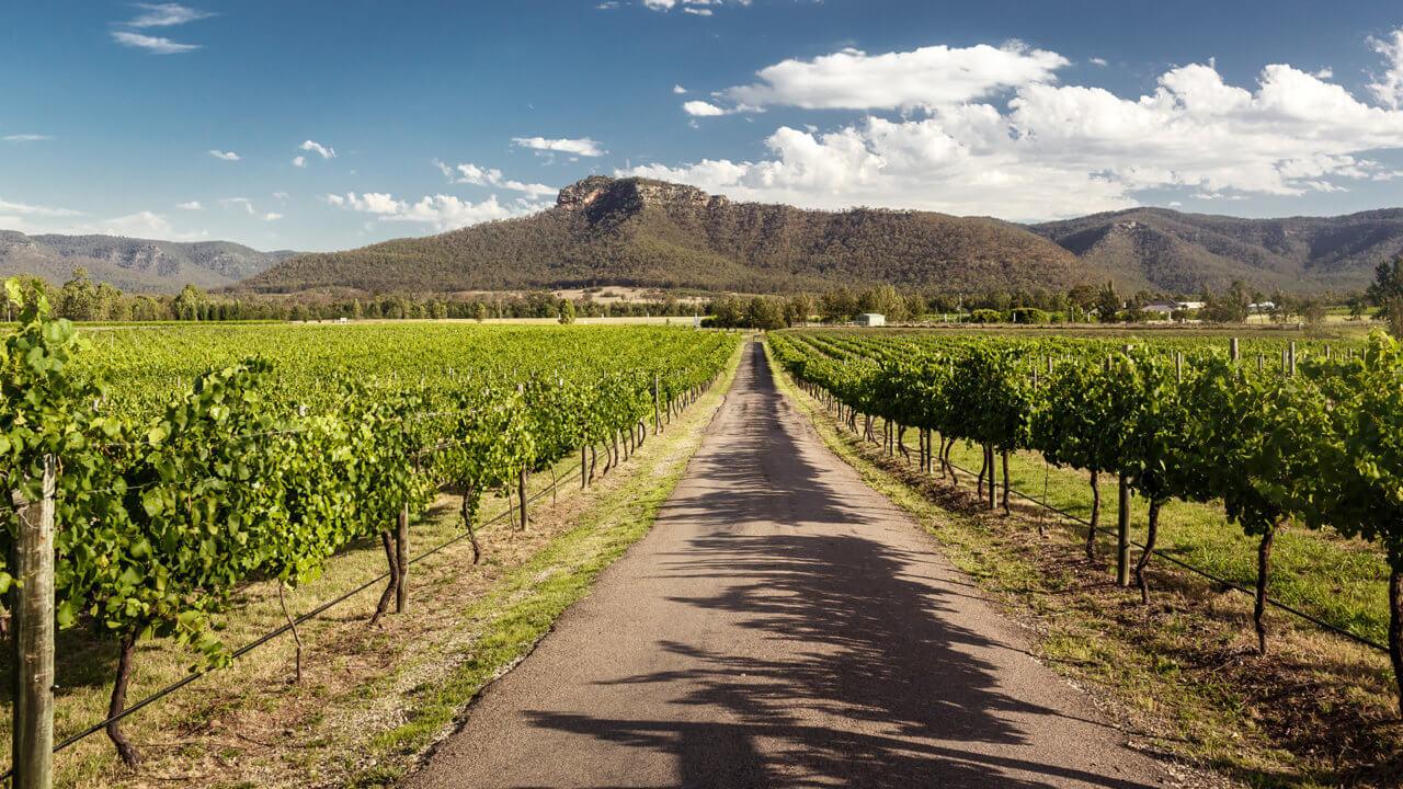 Weinland Australien