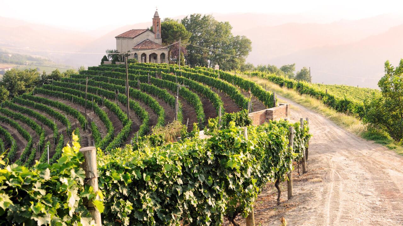 Weinland Spanien